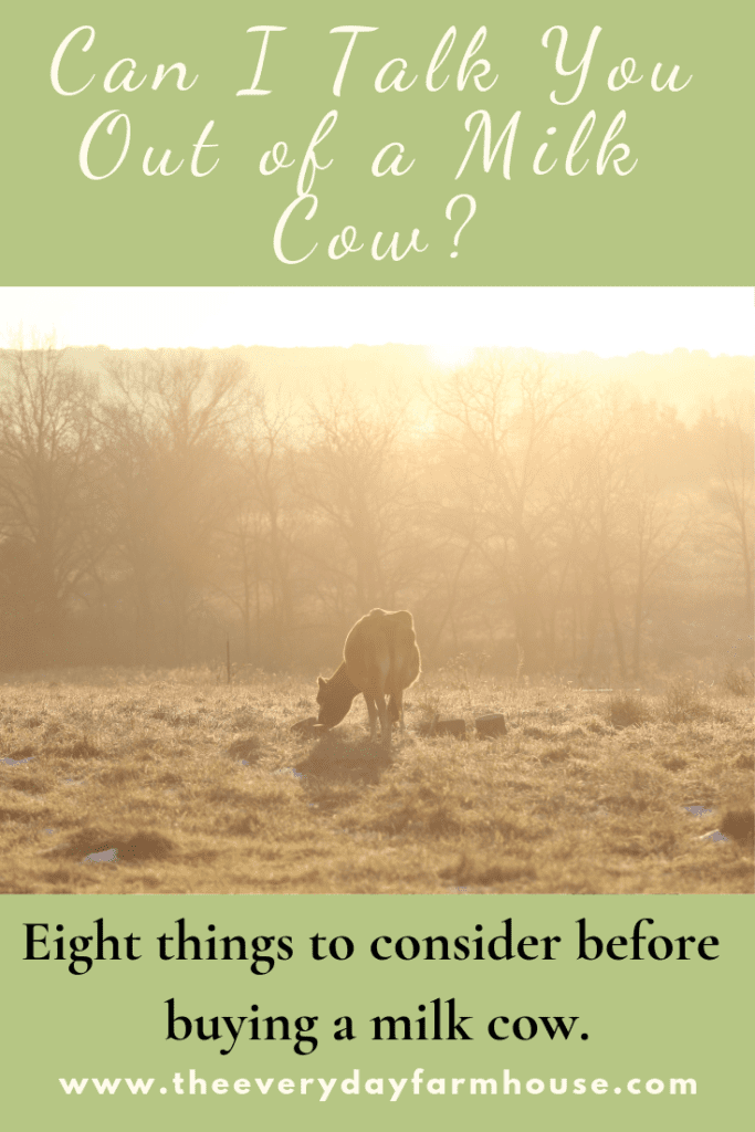 Pin can I talk you out of a milk cow.  Eight things to consider before buying a cow.