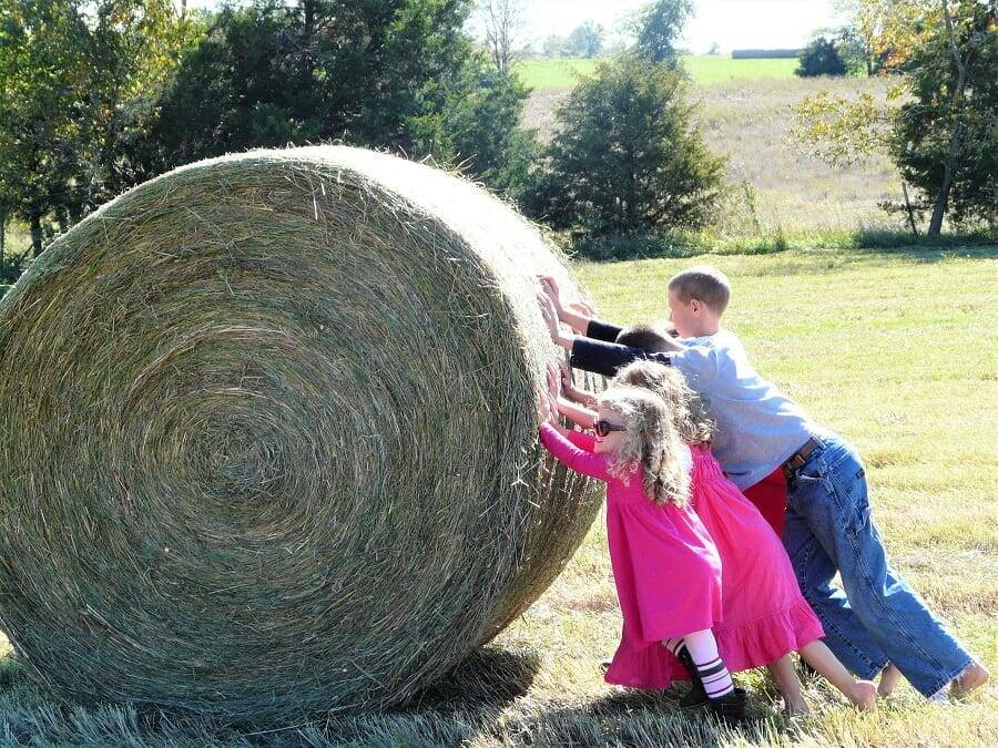 How to Teach your Children to do Hard Things