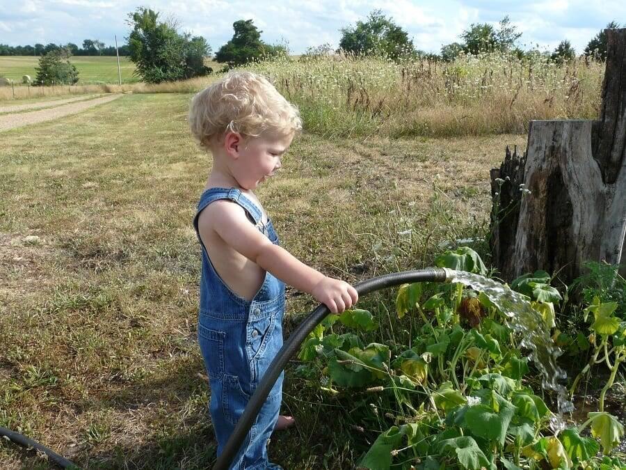 children watering homestead