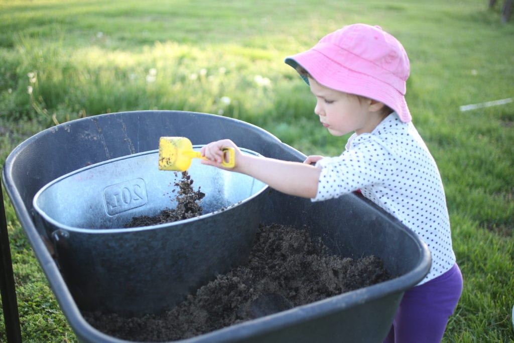 soil for planting lavender in containers