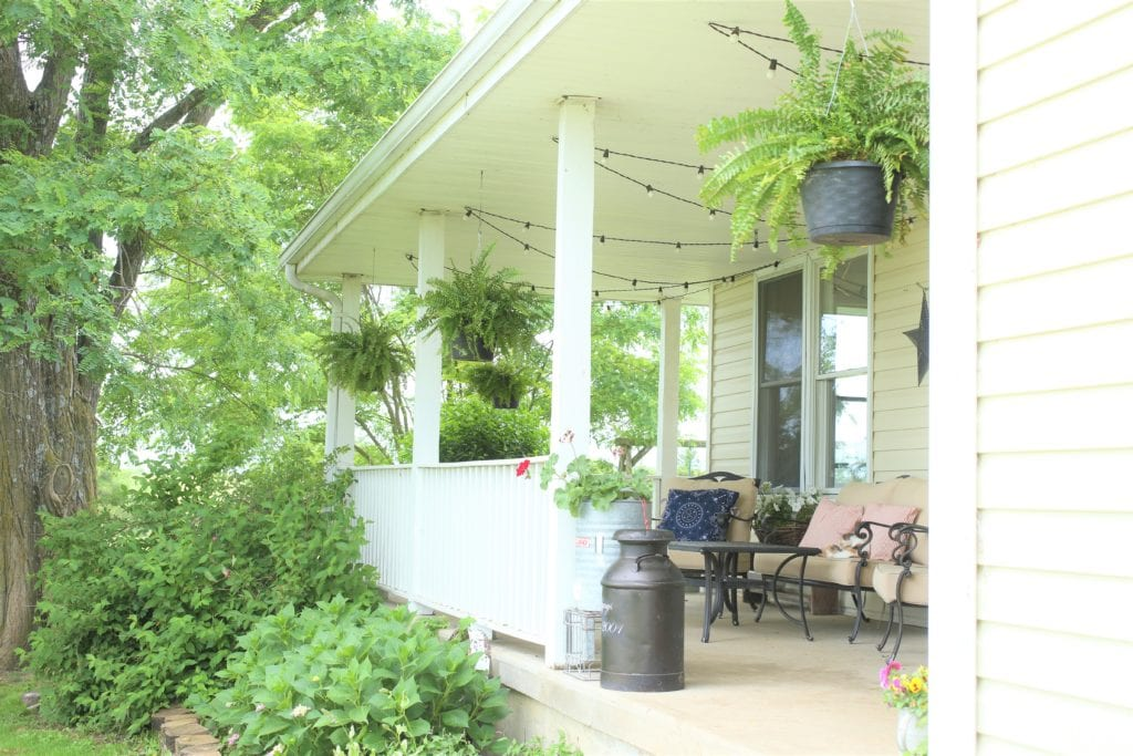 Front porch boston ferns