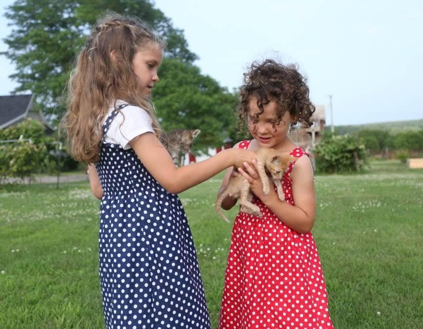 little girls and kitten wearing shirred sundresses