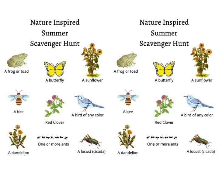 summer scavenger hunt pdf