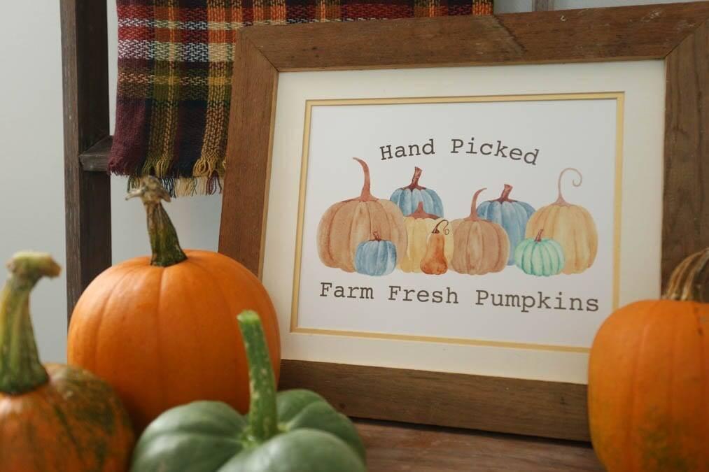 hand picked pumpkin printable