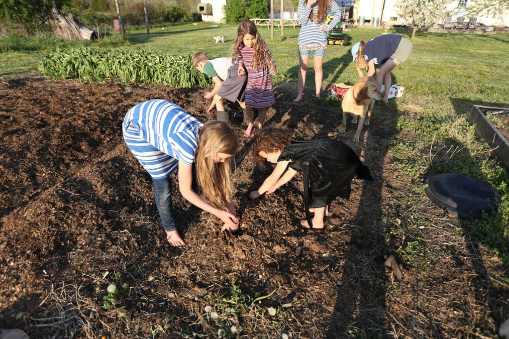 garden tips kids working
