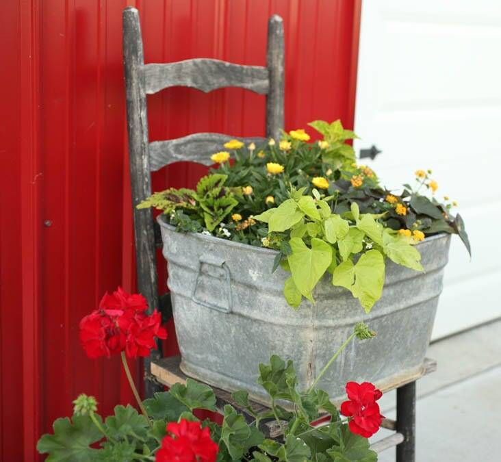 How to Create the Best Large Flower Pots