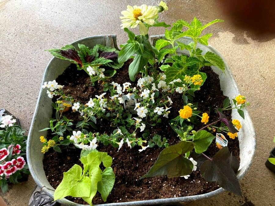 Leave space flower pot