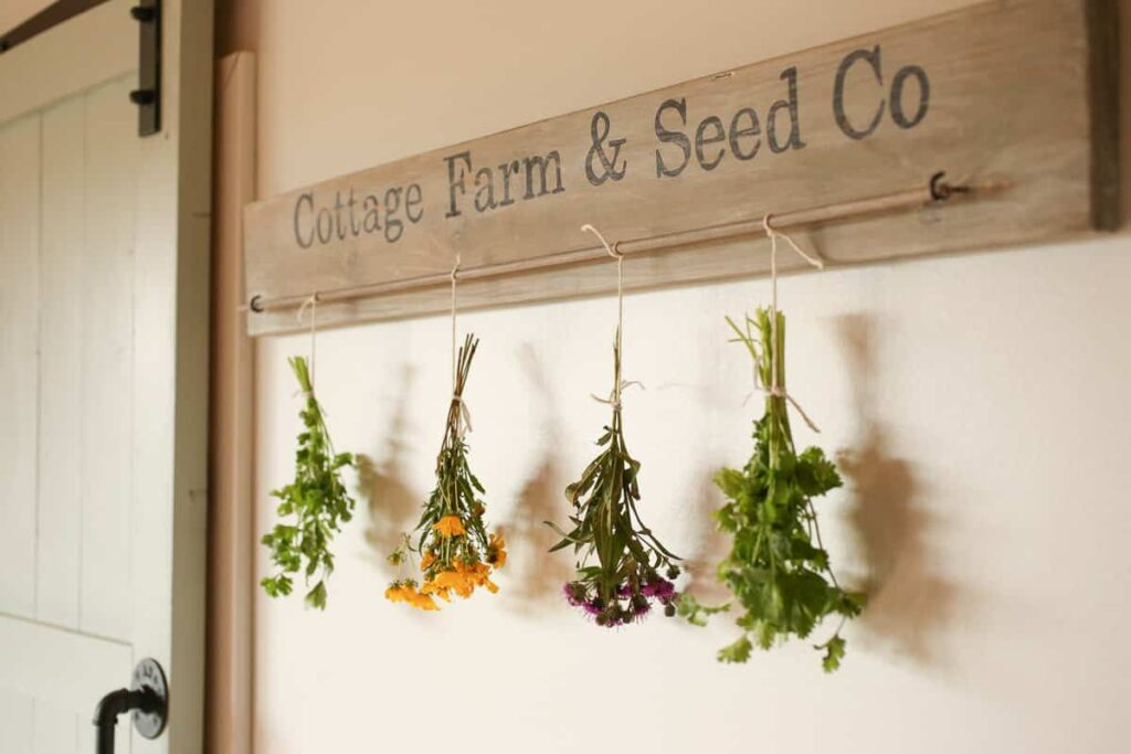 Typically the best herbs to hang dry are ones with a strong flavor and less moisture.  Herbs like mint can be hung to dry, but since it has more moisture it may take longer and smaller bundles are recommended to inhibit mold growth.